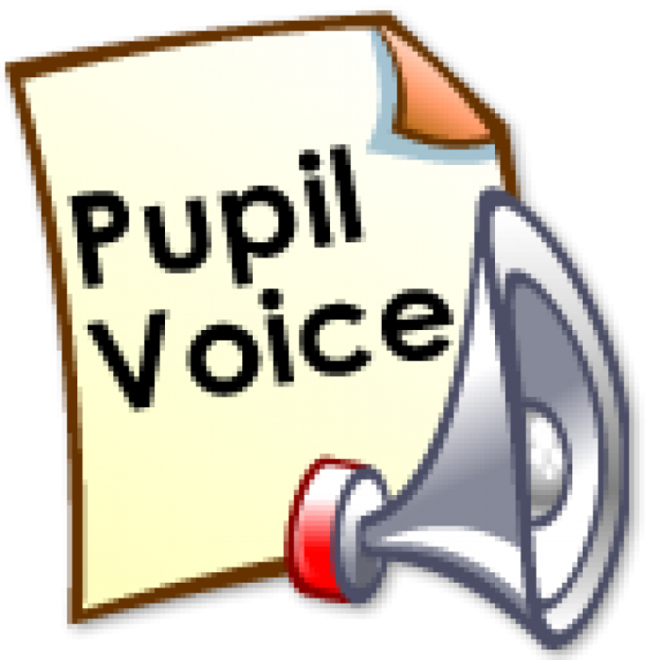 Click on the picture to take part in the Pupil Survey 2017